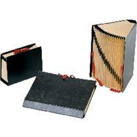 CARCHIVO Carpeta acordeon 20 compartimentos A-Z y 1-31 Formato 4º Negro 199606, (1 u.)